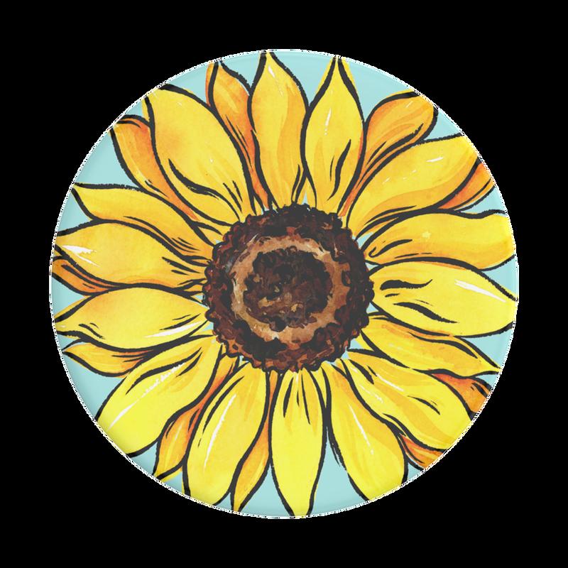 Sun-Bum_01_Top-View